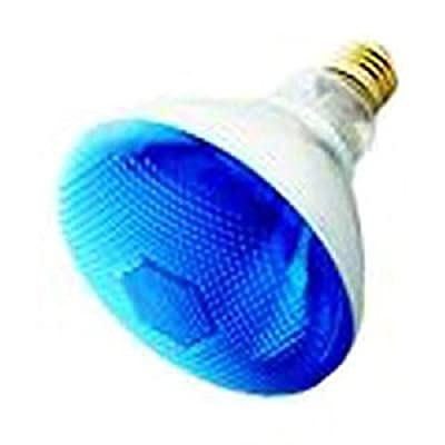 Pack Of 2 100BR38/FL/B Incandescent 100-Watt, Floodlight, Medium Based (E26), BR38 Reflector Colored Bulb, Blue