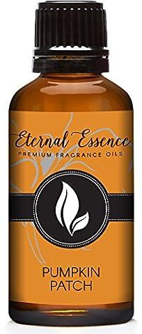 Pumpkin Patch Premium Grade Fragrance Oil - Scented Oil - 30ml - Cinnamon Scented Perfume