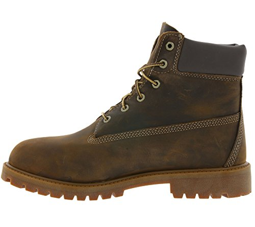 Timberland Authentic, Botas Brown