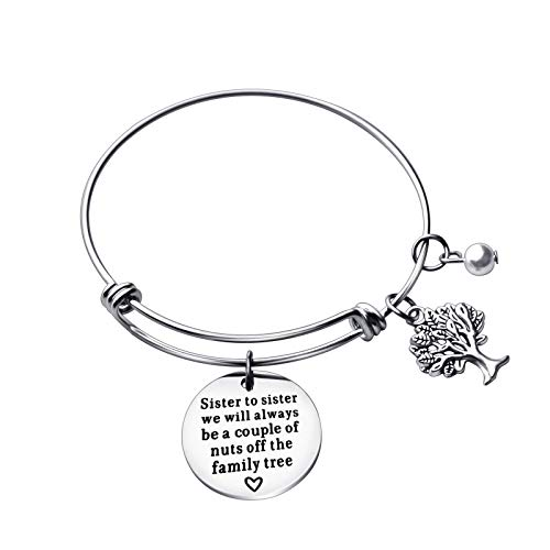 GelConnie Inspirational Bracelets for Women Adjustable Charm Stainless Steel Bangle Engraved Sister to Sister Always Nuts Off The Family Tree Birthday Gift for Sister, Teen ()