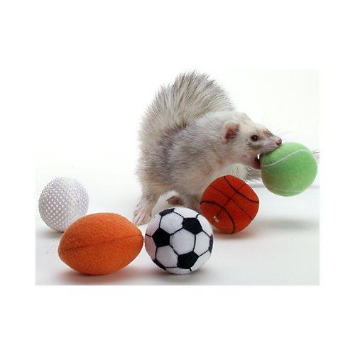 (Marshall Ferret Sport Balls)