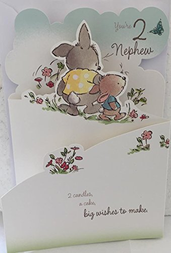 Amazon Hallmark Youre 2 Nephew Birthday Card Boy Age 2nd Today
