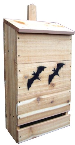 Stovall 10H Nursery Bat House
