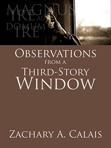 Observations from a Third-Story Window: and Other Stories (The Atlanta Series Book 1) - Calais Single