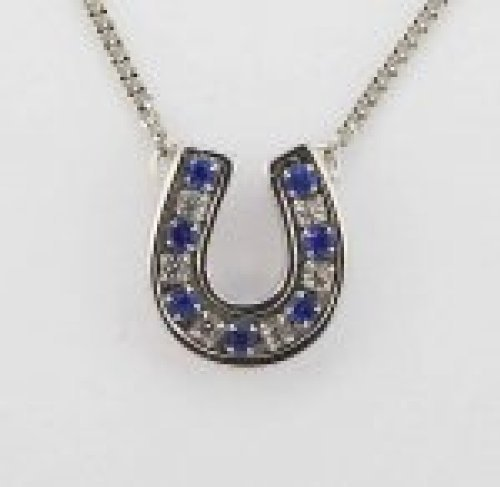 (Finishing Touch Crystal Channel Horseshoe Necklace - Sapphire)