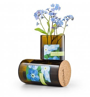 GiftTree Flowering Bottle Thank You Gift - Thoughtful Grow Kit with Blue Forget-Me-Not Flowers in a 8