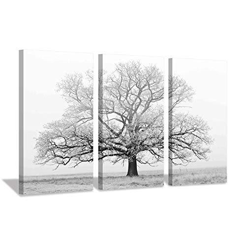 - Hardy Gallery Snowscape Picture Botanical Artwork Prints: Countryside Oak Image on Canvas