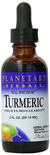 PLANETARY HERBALS Turmeric Liquid Full Spectrum Nutritional Supplement, 2 Fluid Ounce  (Pack of 12) by Planetary Herbals