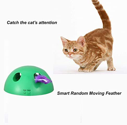 Shydie Cat Interactive Motion Toys, Cat Feather Mice Teaser Toys with Smart Electronic Random Moving Feather and Mouse, Newest Cat Teaser Toys for Cats and Kittens, Best Gift 7