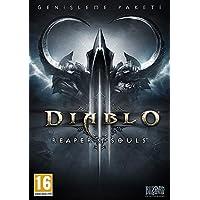 Diablo 3: Reaper Of Souls [PC]