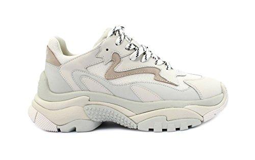 ASH ASH Addict Addict Sneaker Sneaker Addict ASH Sneaker ASH Sneaker r6fxrqwR