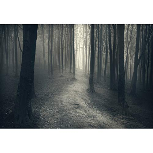 Laeacco Halloween Backdrop 5x3ft Spooky Forest Photography Background Autumn Scenery Dark Trail Foggy Scary Party Night Hallowmas Fancy Ball Costume Ball Holiday Festival Decor Video Photo Prop]()