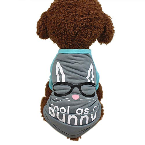 Easter Puppy - Pet Clothes For Girls Boys Easter