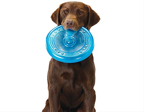 Orka Flyer Rubber Durable Frisbee Chew and Fetch Toy for Dogs, Dog Chew Toy by Petstages