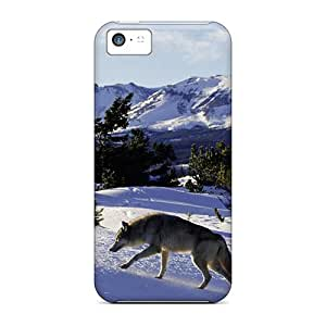 BucYhBL5039BXEAw Snap On Case Cover Skin For Iphone 5c(going For A Walk)