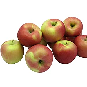 Kauffman Orchards Homegrown Fuji Apples, Fresh-picked in Lancaster County, Pennsylvania (Box of 48)