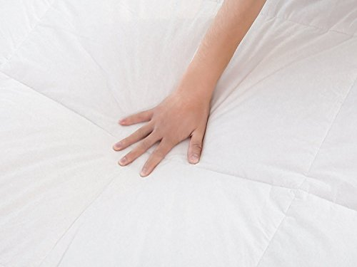 WhatsBedding 100% Cotton Down Comforter with Corner Tabs White Goose Duck Down and Feather Filling Lightweight and Medium Warmth All Season Duvet Insert or Stand-Alone Comforter Queen/Full