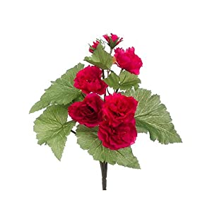 "13"" Begonia Bush Cerise (pack of 12) 40"
