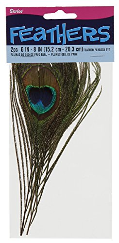 Darice 1019-47 Decorative Feathers, 6 To 8-Inch, Peacock Eye, 2/Pack