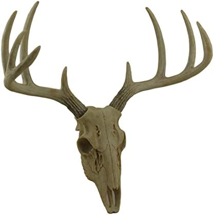 Zeckos Little Bucky Wall Mounted Faux Aged Finish 10 Point Antlers Deer Skull 15 Inch