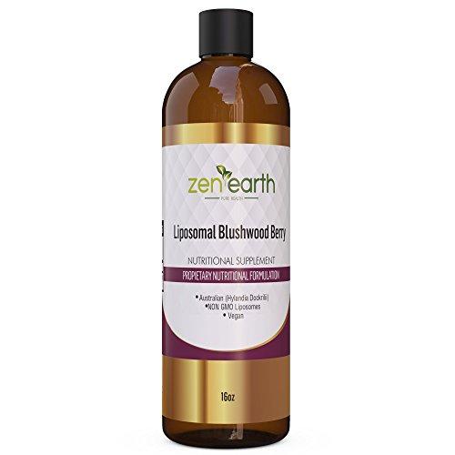Liposomal Blushwood Berry Extract 16 oz Non Gluten, Non Soy, Non GMO - Zen Earth