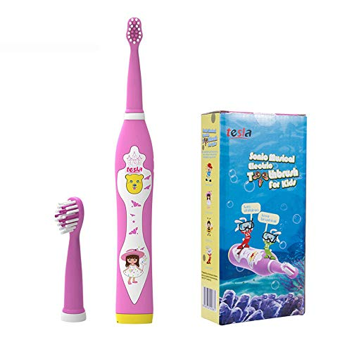 Sonic Electric Toothbrush for Kids,2 Min Smart Timer,4 Songs Automatically Switch,USB Fast Charging,Rechargeable Waterproof Travel Toothbrushes (3-6 year old) Pink by Tesla (Best Toothbrush For 3 Year Old)