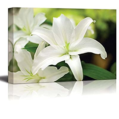 Canvas Prints Wall Art - Close Up of White Lily Floral/Flower Photograph | Modern Wall Decor/Home Decoration Stretched Gallery Canvas Wrap Giclee Print & Ready to Hang - 32