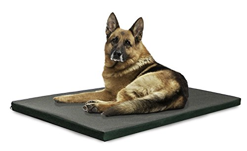 FurHaven NAP Reversible Two-Tone Pet Bed Crate or Kennel Pad Dog Bed, Water-resistant Outdoor Indoor (Dog Bed Outdoor)