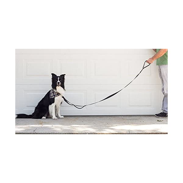 (Black/Red/Grey) – Leashboss 3X – Two Handle Dog Leash with Extra Traffic Handle – Heavy Duty Double Padded Handle Lead… Click on image for further info. 5