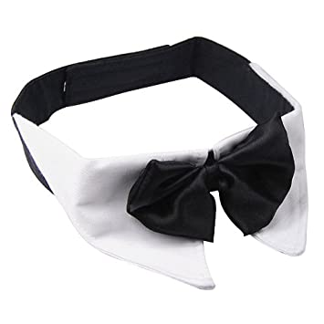 67470f4e9cb7 Medium White Dog Plain Shirt Collar & Black Bow Tie Perfect for Parties  Evening Special Occasion: Amazon.co.uk: Pet Supplies