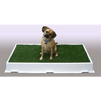 Amazon porch potty standard with synthetic grass pet floor porch potty standard with synthetic grass solutioingenieria Gallery