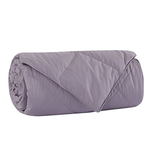 Lightweight White Goose Down and Feather Comforter Blanke...