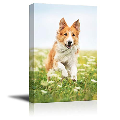 (SIGNFORD Custom Canvas Prints, Pets Personalized Poster Wall Art with Your Photos Wood Frame Digitally Printed - 18x12 Inch)