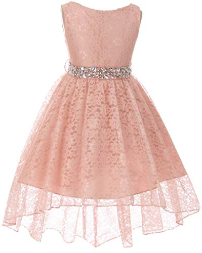 Big Girl Floral Lace Rhinestones Christmas Holiday Easter Flower Girl Dress Blush 14 MBK360]()