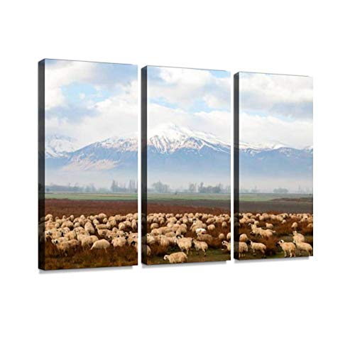 Herd of Sheep in The Pyrennes Mountains Print On Canvas Wall Artwork Modern Photography Home Decor Unique Pattern Stretched and Framed 3 Piece