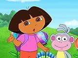 Dora The Explorer: Dora Saves the Three Little Piggies