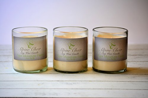 Alpine Cheer Soy Wax Candle