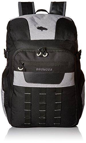 NFL Baltimore Ravens Franchise Backpack, 18.5-Inch, Black