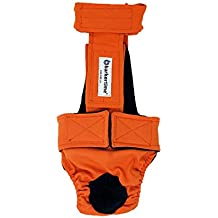 Barkertime Dog Diaper Overall - Made in USA - Neon Orange Escape-Proof Washable Dog Diaper Overall, S, Without Tail Hole for Dog Incontinence, Marking, Housetraining and Females in Heat