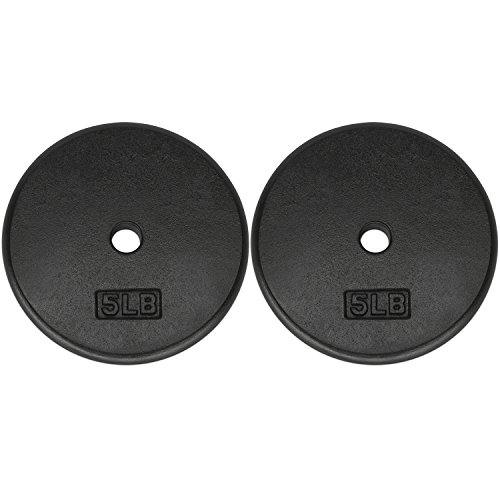 Yes4All 1-inch Cast Iron Weight Plates for Dumbbells – Standard Weight Disc Plates (5 lbs, Set of 2) (1 Plates Inch)