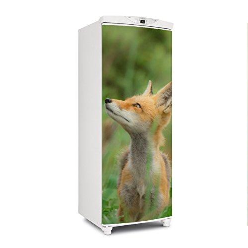 Adesivo geladeira envelopamento porta natureza raposa - até 1,50x0,60 m
