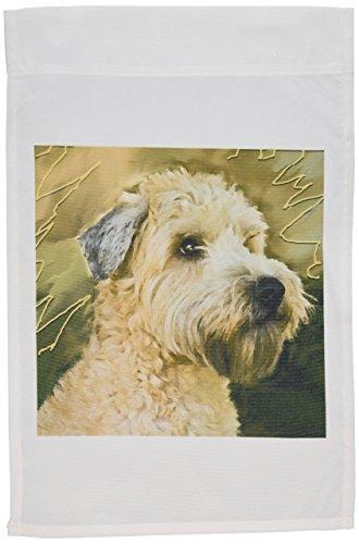 (3dRose fl_4808_1 Soft Coated Wheaten Terrier Portrait Garden Flag, 12 by 18-Inch)