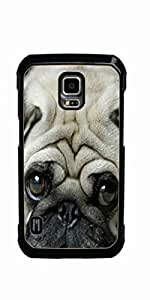 toy poodle dog Hard Case for Samsung Galaxy S5 Active
