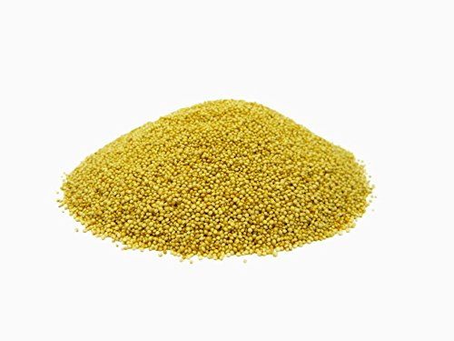 Amaranth Grains / Seeds (Rajagro) - 1.5kg by Jalpur Millers