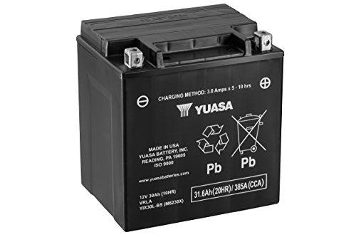 Yuasa YUAM6230X YIX30L-BS Battery (Yuasa 12 Volt 2-1 Amp Lead Acid Battery)