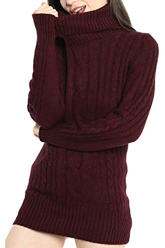 Liny Xin Women s Cashmere Knitted Turtleneck Long Sleeve Winter Wool  Pullover Long Sweater Dresses Tops 571828c91