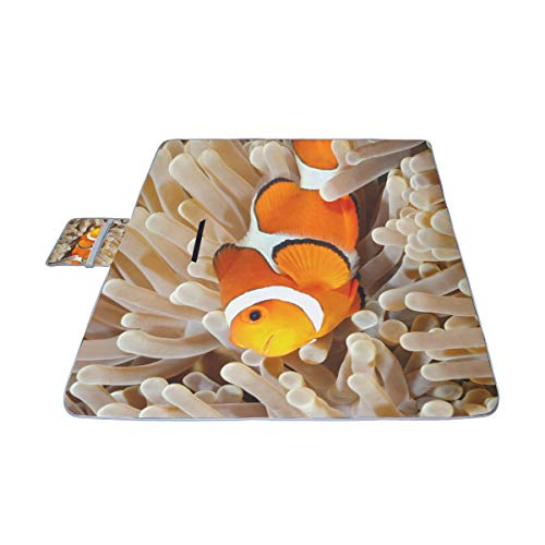 (HTJZH Clown Fish Anemone and Clown Picnic Mat 57''(144cm) x79''(200cm) Picnic Blanket Beach Mat with Waterproof for Kids Picnic Beaches and Outdoor Folded Bag)