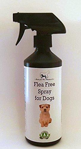 * * * * * * * * * * * * * * * * LIVRAISON GRATUITE * * * * * * * * * * * * * * * * application 100% naturel contre les puces et tiques Spray pour chiens Avalon Pet Products