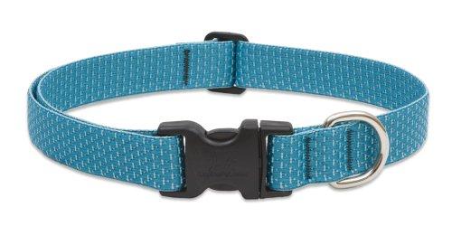 Eco Dog Collar - LupinePet Eco 1