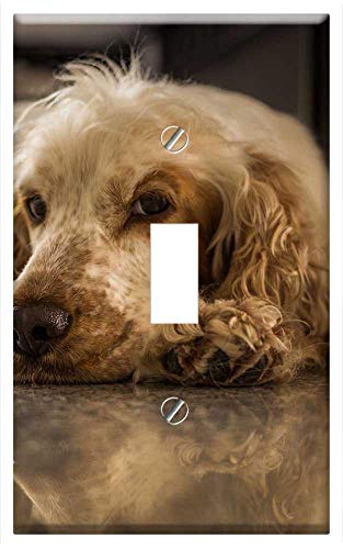 - Switch Plate Single Toggle - Dog Cocker Spaniel Animal World Animal Pet Cocker